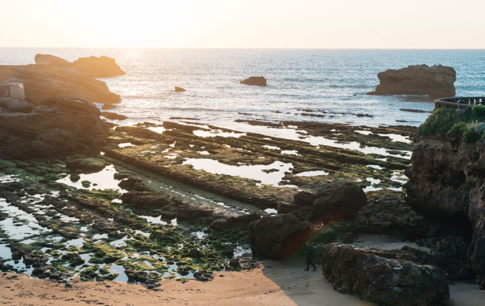 aquitaine biarritz beach summer low tide