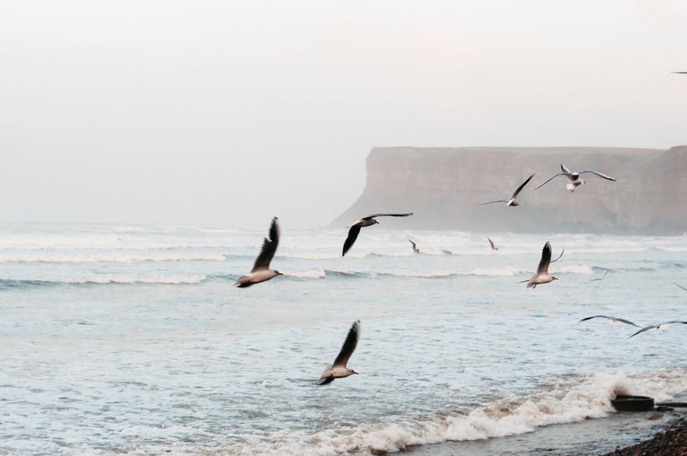 Saltburn-by-the-Sea, England, North Sea