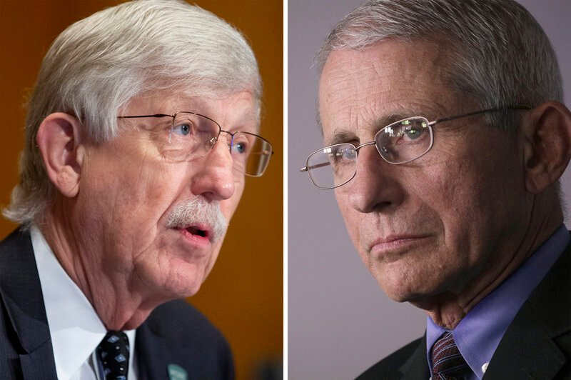 Francis collins and anthony fauci