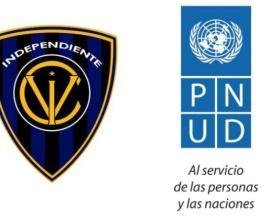idv-donacion-copa-libertadores
