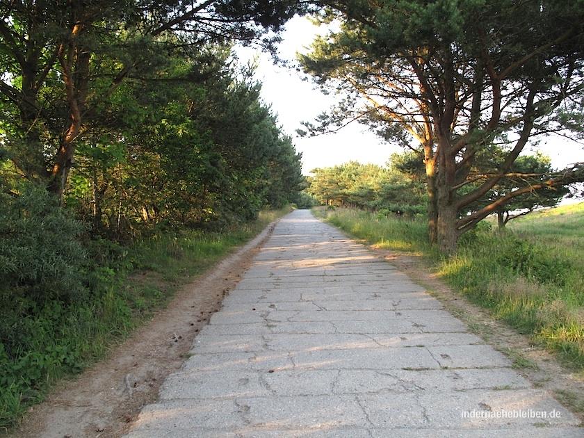 Weg zum Dornbusch, dem Wahrzeichen von Hiddensee