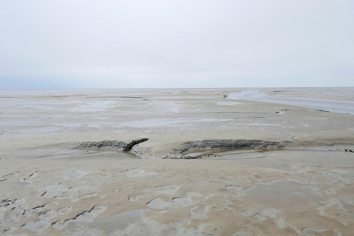 das hamburgische Wattenmeer