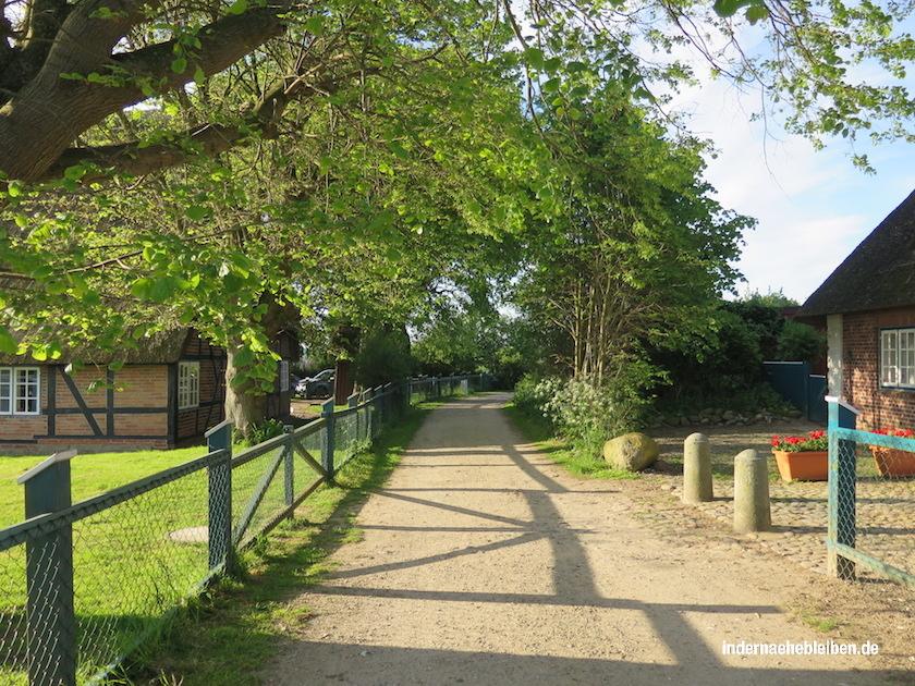 Lippe Ostsee