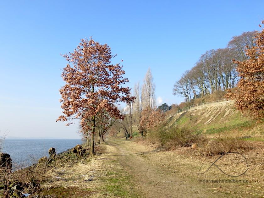 Elbuferweg