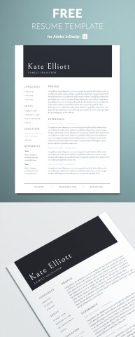 Professional Resume Template Free Download  Free Download Creative     Professional Resume Template Free Indesign Templates