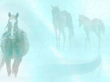 Horse 04 PowerPoint Template
