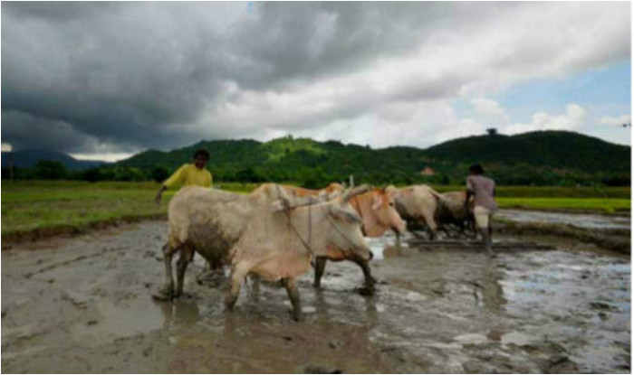 Monsoon 2017 Weather Forecast For June 4 For Kerala