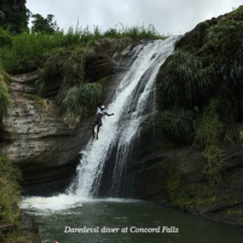 Daredevil diver at Concord Falls