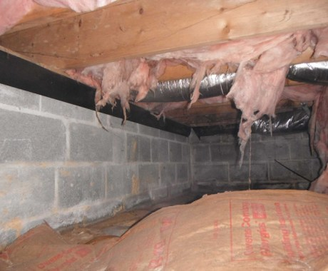 How To Keep Crawl Space Rodents & Pests Out Of Your Home