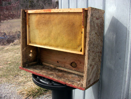 Get your swarm traps ready for Spring!