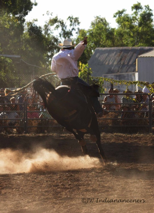 Fitzroy Rodeo.