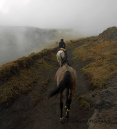 Riding through the clouds, foothills of Antisana.