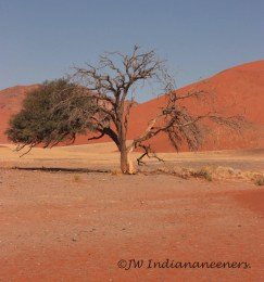 Contrasts of Colours at Soussusvlei.