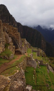 The Incas possessed a great knowledge from long before their time......great feats of engineering and ingenuity.
