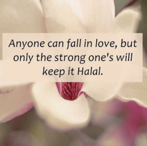 Islamic Images Quotes Wallpapers Pics Free Download For Whatsappfb