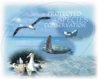 Protected Species_indianbureaucracy