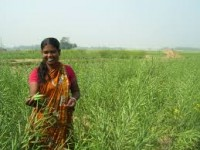 Women_Agriculture Sector_indianbureaucracy