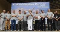World Elephant Day_indianbureaucracy