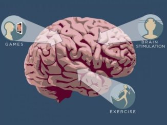Exercise benefits brains, changes blood flow in older adults, study finds