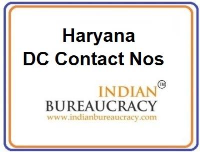 Haryana DC Contact Nos