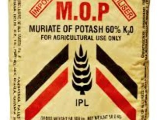 Indian Potash Limited to cut the price of Muriate of Potash