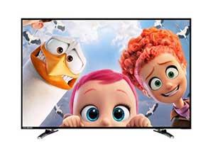 Noble Skiodo 60 cm 24 inches 24CV24N01 HD Ready LED TV