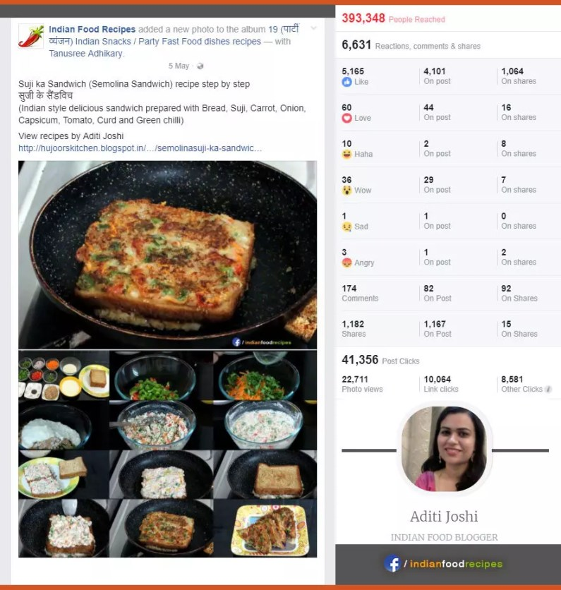Indian Food Blogger (Aditi Joshi) - Post Statistics