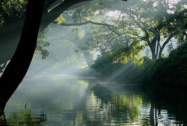 Photo Gallery Of Alappuzha Backwaters Explore Alappuzha