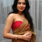 Sexy Indian girl in Blouse showing Big Boobs and Cleavage desi boobs pics hot boobs images Hot Indian Girls photos (54)