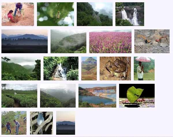 west_ghats_ecology_animals_screenshot_06