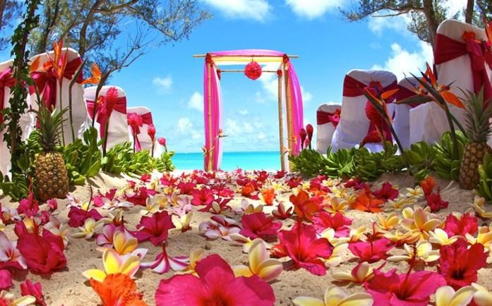 Hawai Wedding - IndianWeddingCards