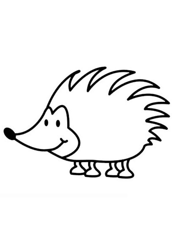 Coloring Pages Hedgehog Coloring Pages