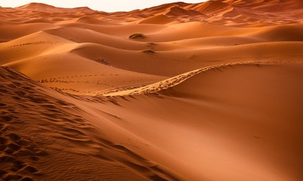 Deserts of the world : their location, size and topography