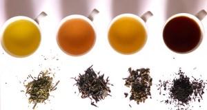 Karukrit ventures into tea segment