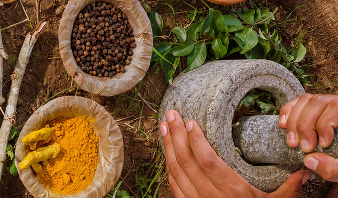Central regulations for Ayurvedic industry soon
