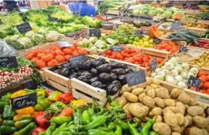 Centre accords approval to set up mega food park in Mandsaur