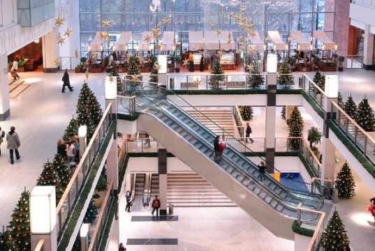 Watch Video: Future of shopping malls in India