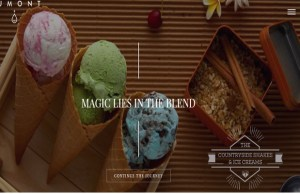 Premium ice cream brand Dumont to set up 100 outlets