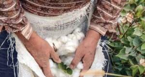 11 fashion retailers working towards sustainability
