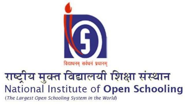 Basic Computing NIOS 2010 November Exam Hindi