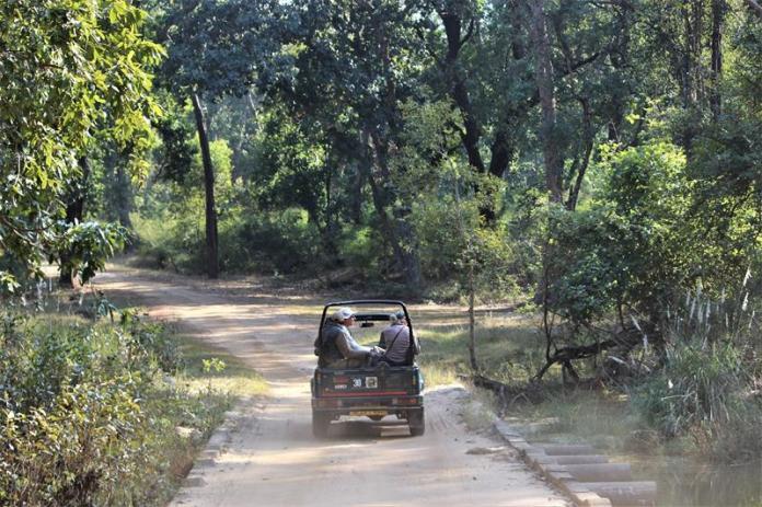 Safari in Tala Zone