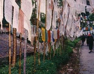 Sikkim-prayer flags