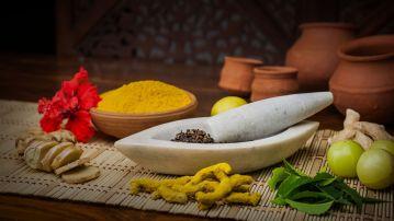 भारतीय संस्कृति व चिकित्सा पद्धति में आयुर्वेद का महत्व – भाग १