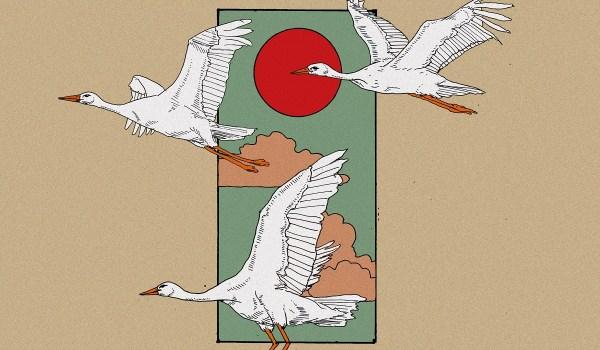 [LP] The Rebels of Tijuana – Asile