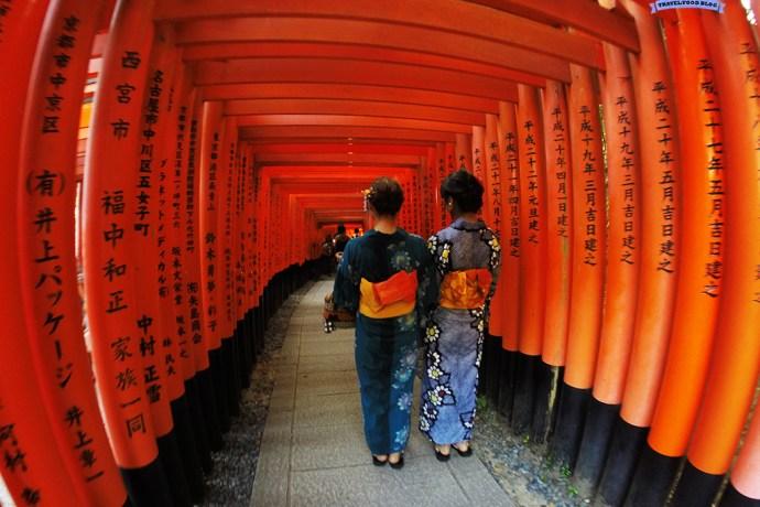 Torii Path Kyoto