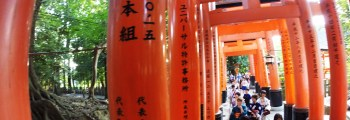 Torii Path Kyoto – REALTA'