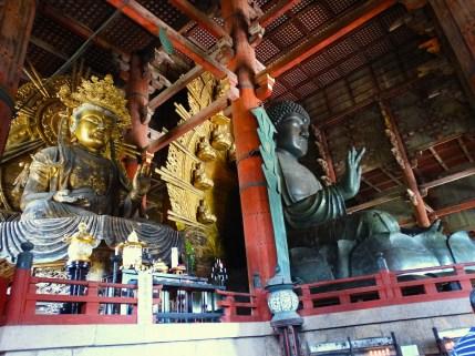 Giappone templi nara cervi giapponese (5)