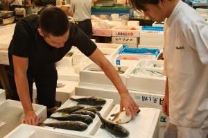 mercato del pesce fish market tokyo giappone 4