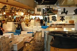 mercato del pesce fish market tokyo giappone 9