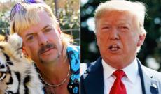 Trevor Noah's Big 'Tiger King' Lesson: Joe Exotic and Trump Are the Same Person